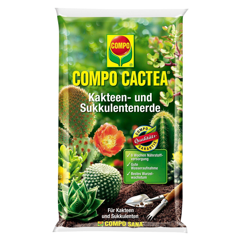 Compo Cactea Kakteen- und Sukkulentenerde 5 l | Dekoration > Dekopflanzen > Pflanzen | Compo