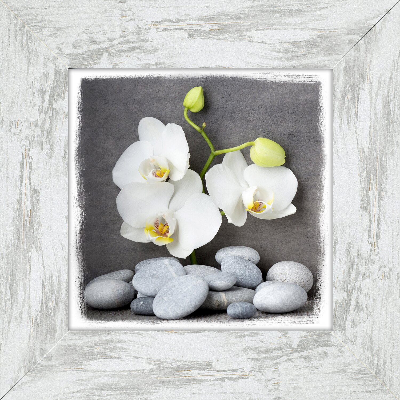 bild mit rahmen wellness slogan i 44 cm x 44 cm kaufen bei obi. Black Bedroom Furniture Sets. Home Design Ideas