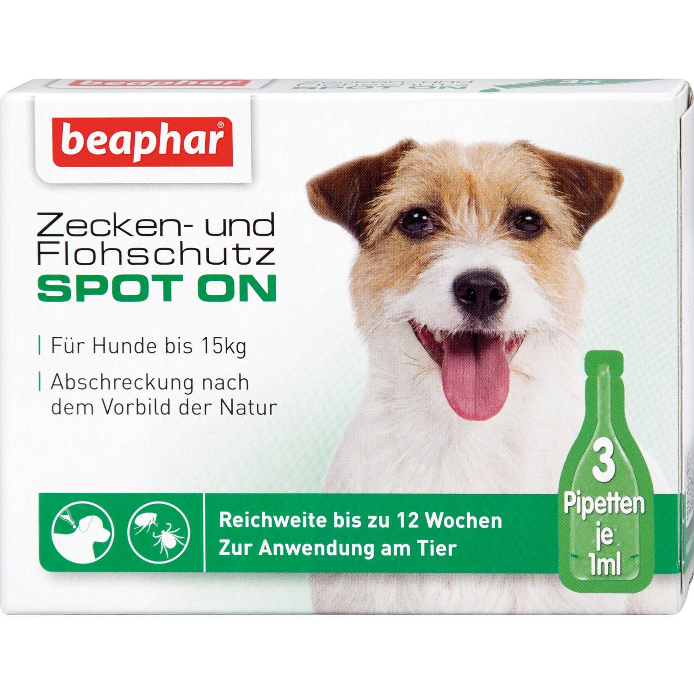 Beaphar Zecken- und Flohschutz Spot on für klei...