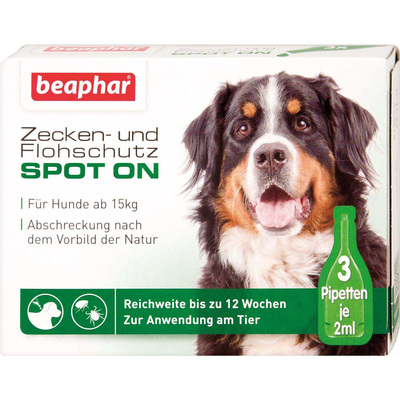 Beaphar Zecken- und Flohschutz Spot on für groß...
