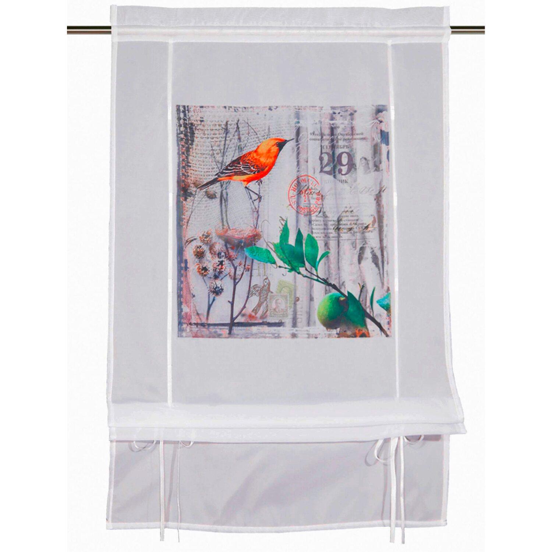 b ndchenrollo vogel wei orange 120 cm x 60 cm kaufen bei obi. Black Bedroom Furniture Sets. Home Design Ideas
