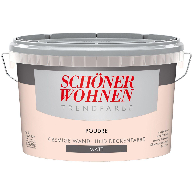 Farbpalette Wandfarben Braun Obi Gasflasche: Schöner Wohnen Trendfarbe Poudre Matt 2,5 L Kaufen Bei OBI