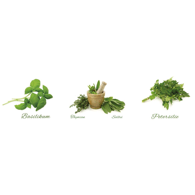 Eurographics  Wandtattoo 3-teilig Different Herbs