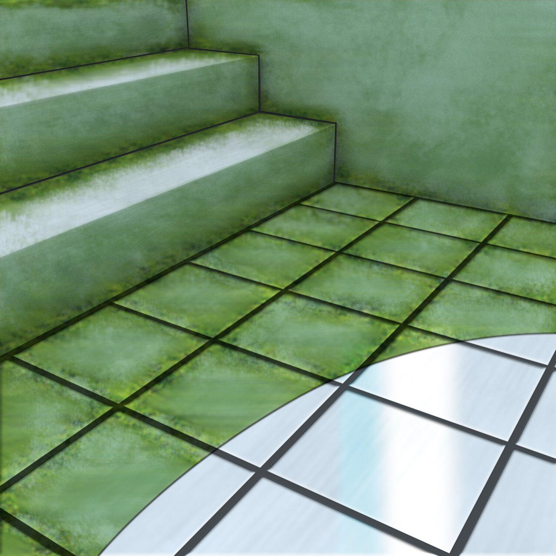 algen und gr nbelagentferner 1 l kaufen bei obi. Black Bedroom Furniture Sets. Home Design Ideas