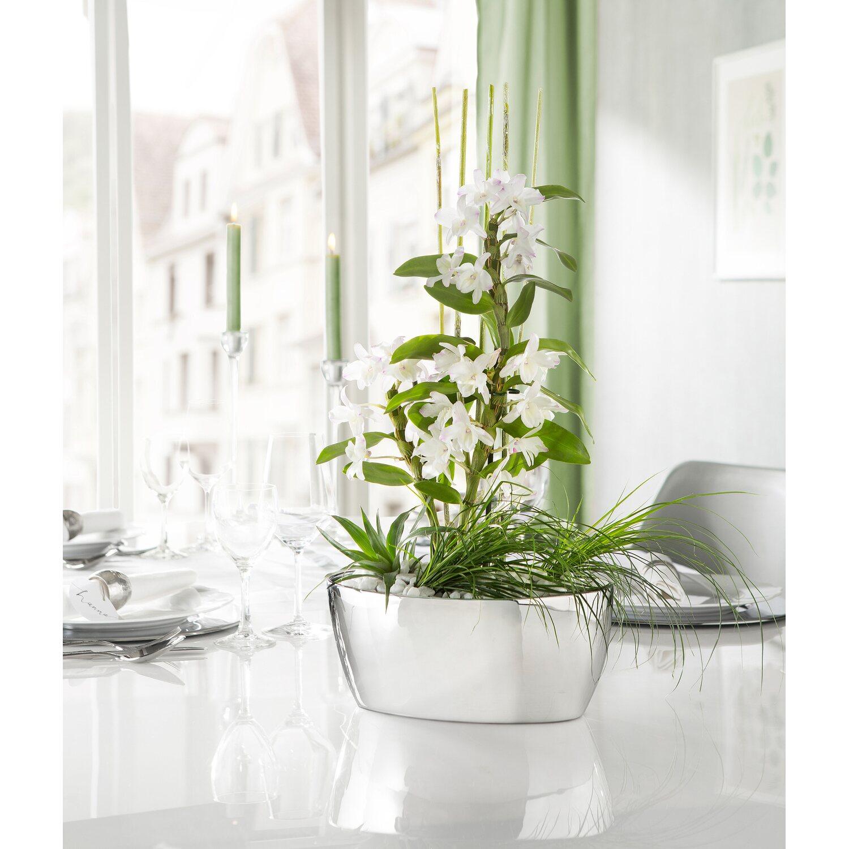 Scheurich Jardiniere 425 O 28 Cm Mirror Silver