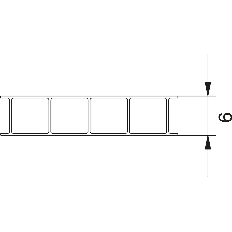 Favorit Hohlkammerplatte 6 mm Klar 2500 mm x 1050 mm kaufen bei OBI OA26
