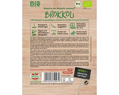 Bio-grünsprossen brocoli nachfüllpads