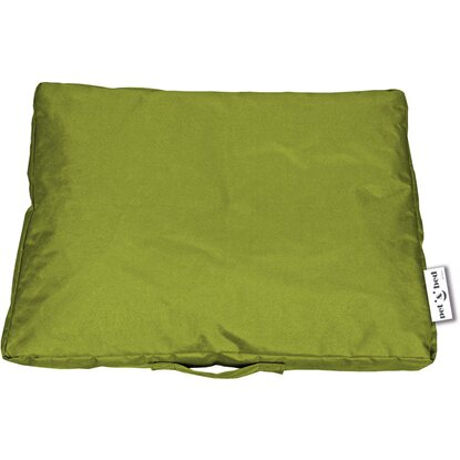 Bean Bag- Edged- Pet & Fun- Lime