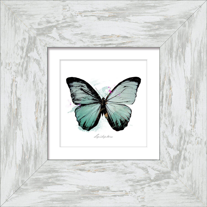 bild mit rahmen butterfly spring i 34 cm x 34 cm kaufen bei obi. Black Bedroom Furniture Sets. Home Design Ideas