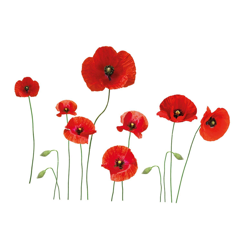 Eurographics wandtattoo poppies family kaufen bei obi - Wandtattoo family ...