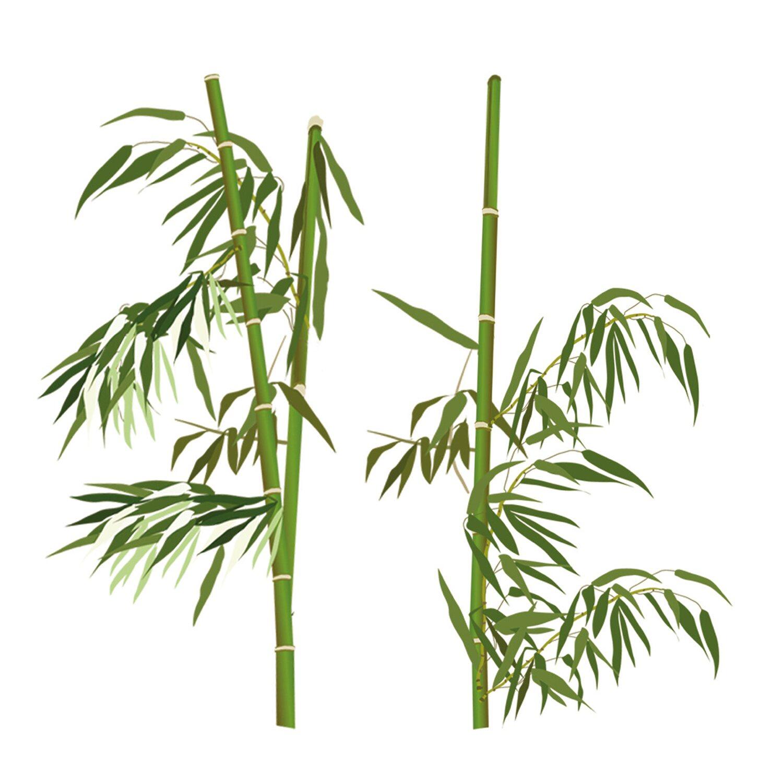 eurographics deco sticker bamboo everywhere kaufen bei obi. Black Bedroom Furniture Sets. Home Design Ideas