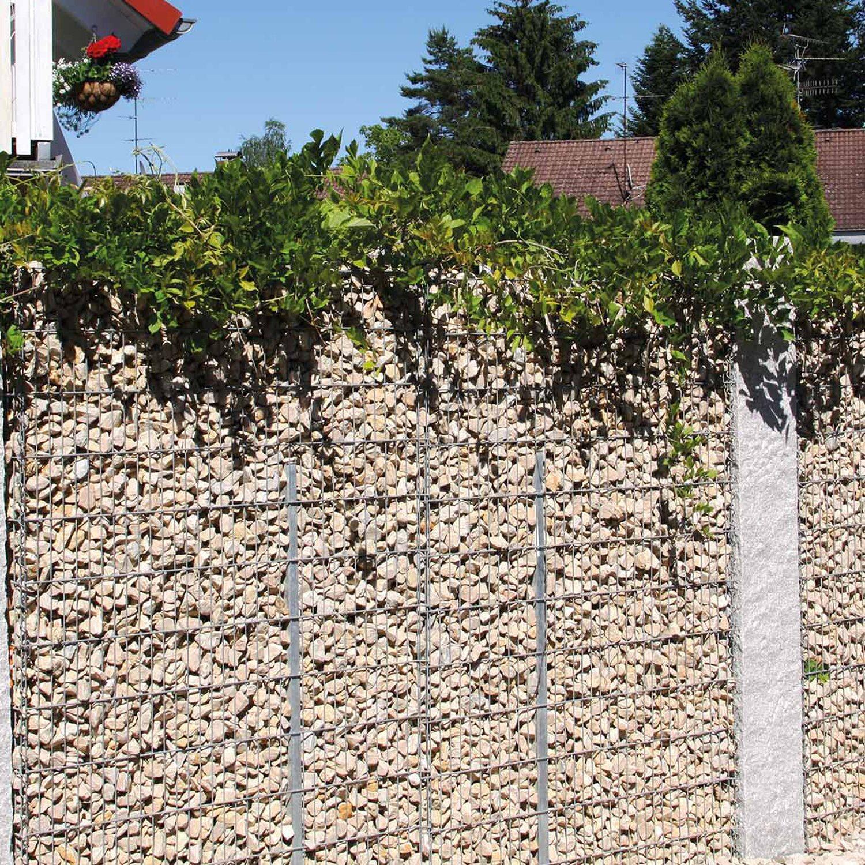 bellissa gabionen mauer limes mit kalkstein f llung 115 cm x 12 cm x 60 cm kaufen bei obi. Black Bedroom Furniture Sets. Home Design Ideas