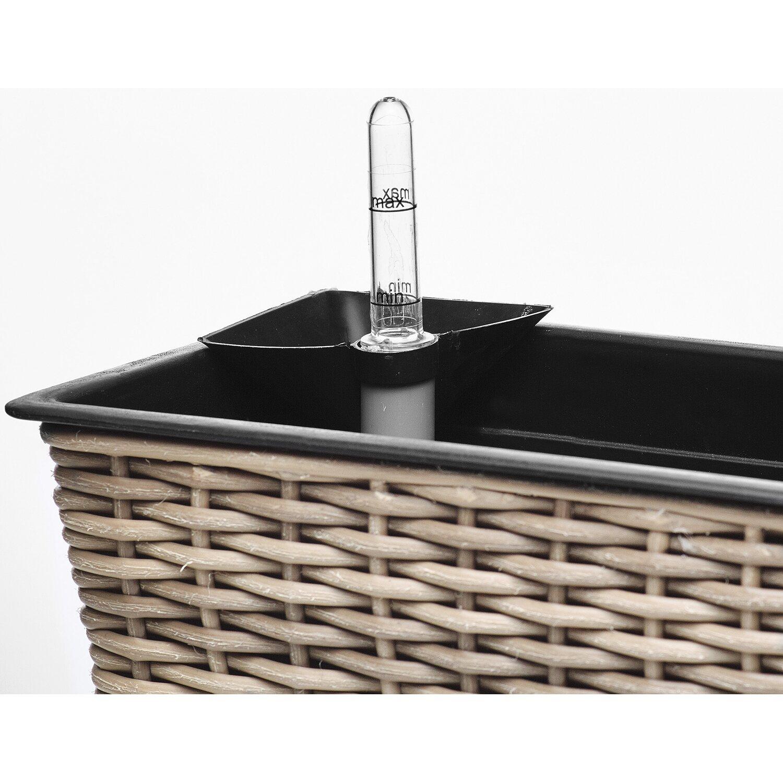 gartenfreude balkonkasten 80 cm x 19 cm naturfarben mit bew sserungssystem kaufen bei obi. Black Bedroom Furniture Sets. Home Design Ideas