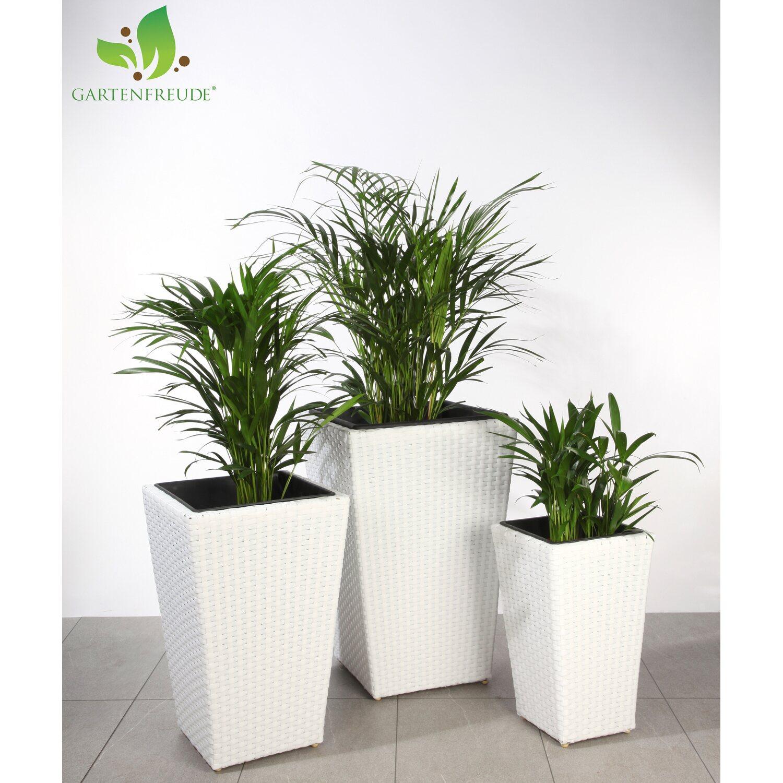 Gartenfreude Pflanzkübel Polyrattan Weiß Größe XL 3er-Set kaufen ...