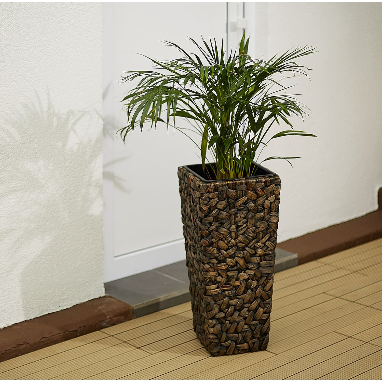 gartenfreude pflanzk bel wasserhyazinthe konisch 28 cm x. Black Bedroom Furniture Sets. Home Design Ideas