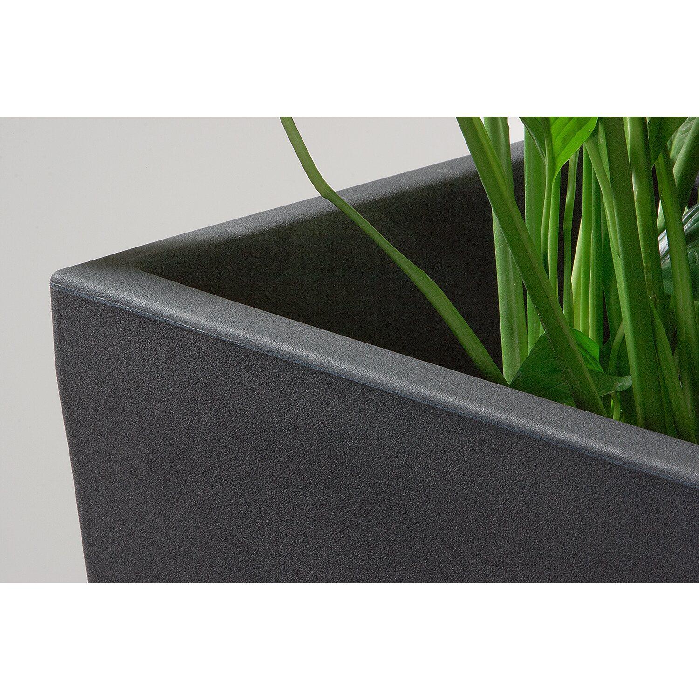 pflanzk bel kunststoff anthrazit ez17 hitoiro. Black Bedroom Furniture Sets. Home Design Ideas