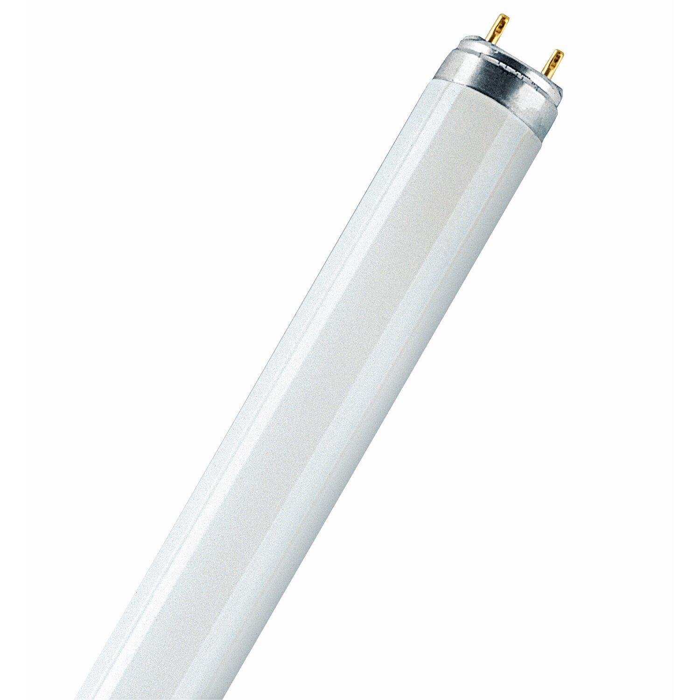 Osram Leuchtstofflampe Stabform Pflanzenlicht T...