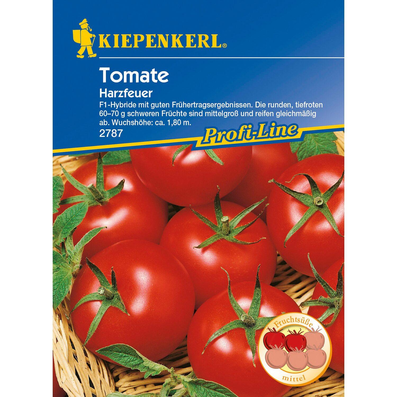 kiepenkerl profi line tomaten harzfeuer f1 hybride kaufen bei obi. Black Bedroom Furniture Sets. Home Design Ideas