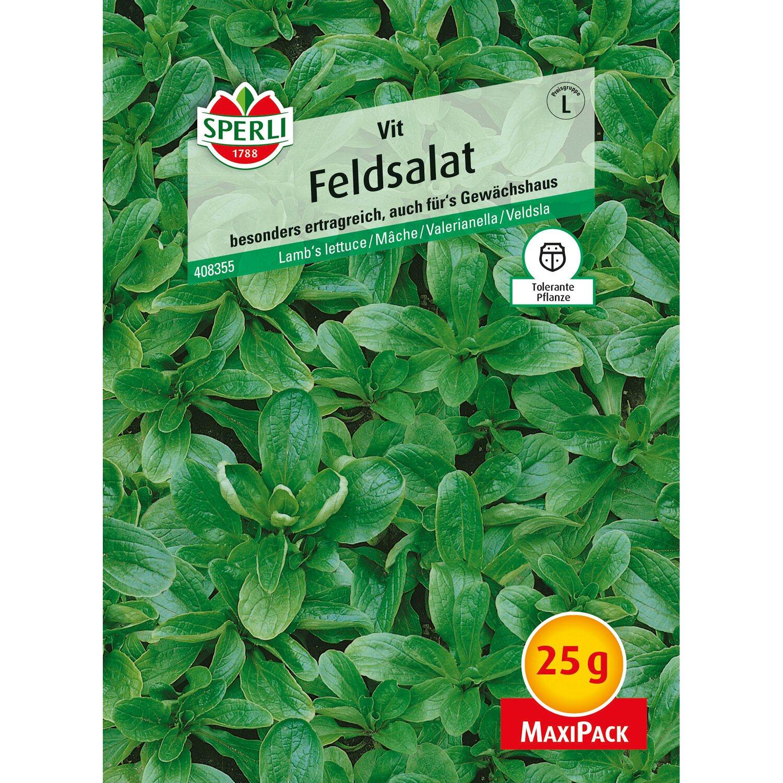Sperli Feldsalat Vit 25 g