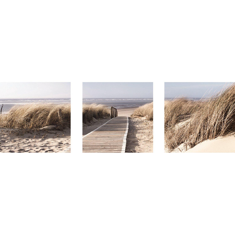 Eurographics EUROGRAPHICS Wandsticker »Morning Walk »