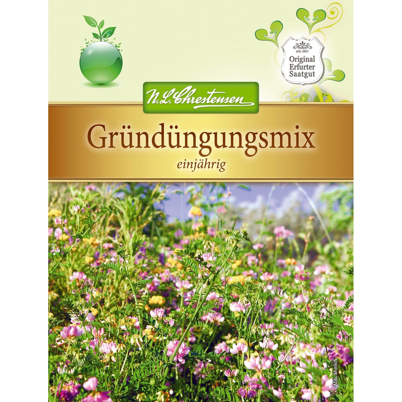 N.L. Chrestensen Gründüngungsmix