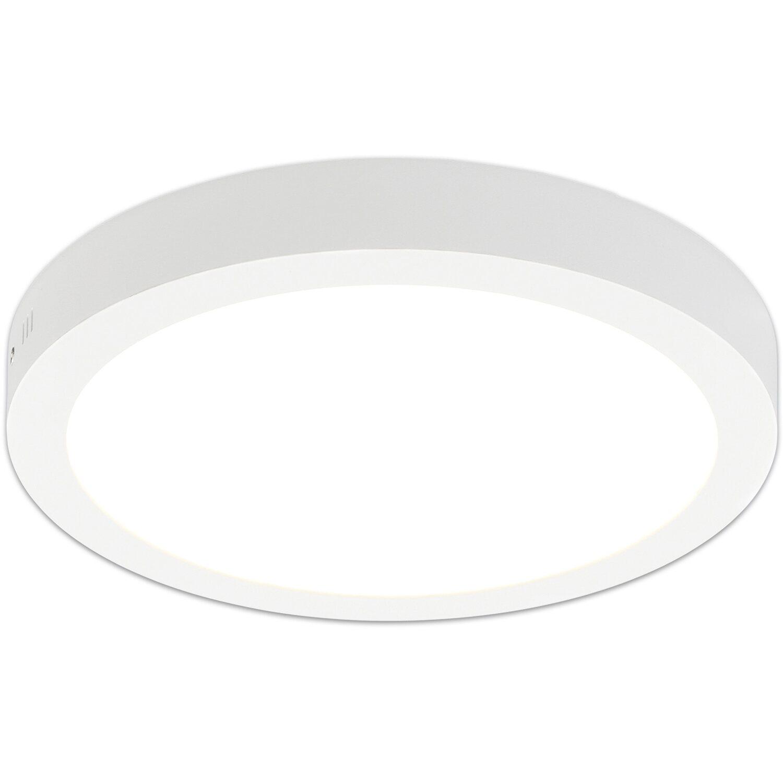 Näve LED-Aufbaupanel Atlanta dimmbar Ø 30 cm Weiß EEK: A Preisvergleich