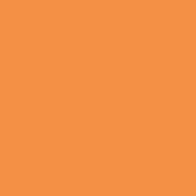 alpina color fresh orange seidenmatt 250 ml kaufen bei obi. Black Bedroom Furniture Sets. Home Design Ideas