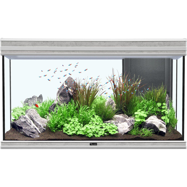 Aquatlantis Aquarium Fusion 100 Bio Steinoptik ...