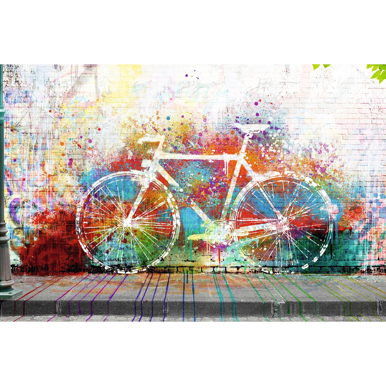 wandbild graffiti fahrrad 90 cm x 60 cm kaufen bei obi. Black Bedroom Furniture Sets. Home Design Ideas