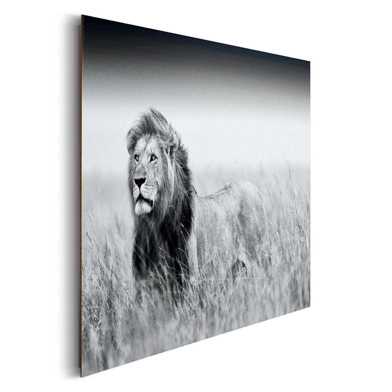Wandbild k nige der natur l we 90 cm x 60 cm kaufen bei obi for Mobili 90 x 60