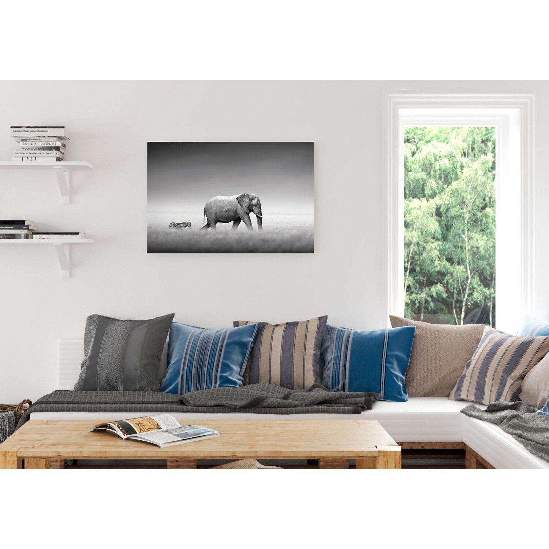 Wandbild Könige der Natur Elefant 90 cm x 60 cm kaufen bei OBI