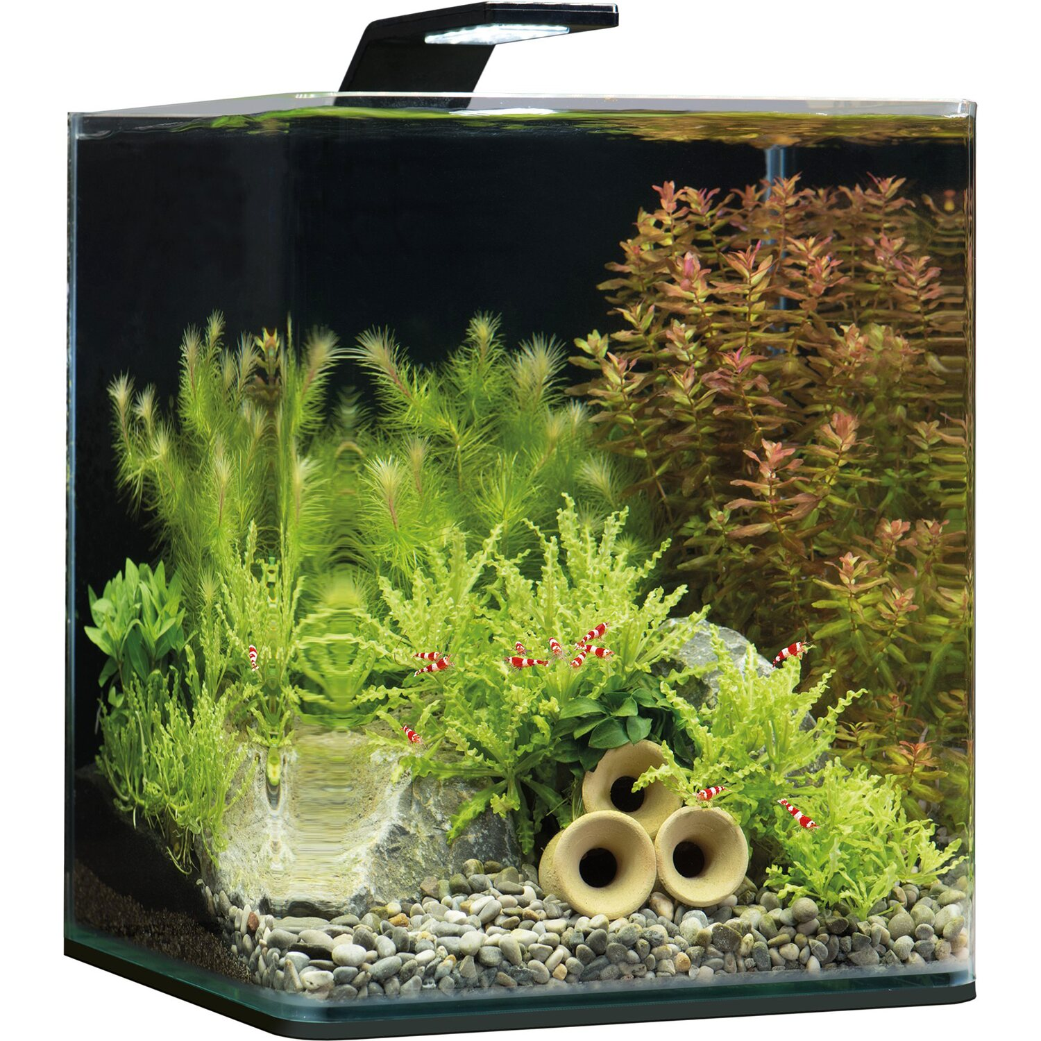 Dennerle Mini-Aquarium Nano Cube® Basic 20 l