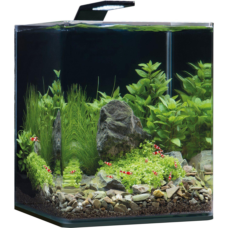 Mini-Aquarium Dennerle Nano Cube® Complete+ 20 l