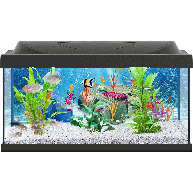 tetra aquarium set playmobil led 54 l schwarz kaufen bei obi. Black Bedroom Furniture Sets. Home Design Ideas