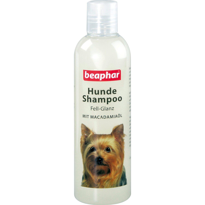 Beaphar Hunde Shampoo Fell-Glanz 250 ml Preisvergleich