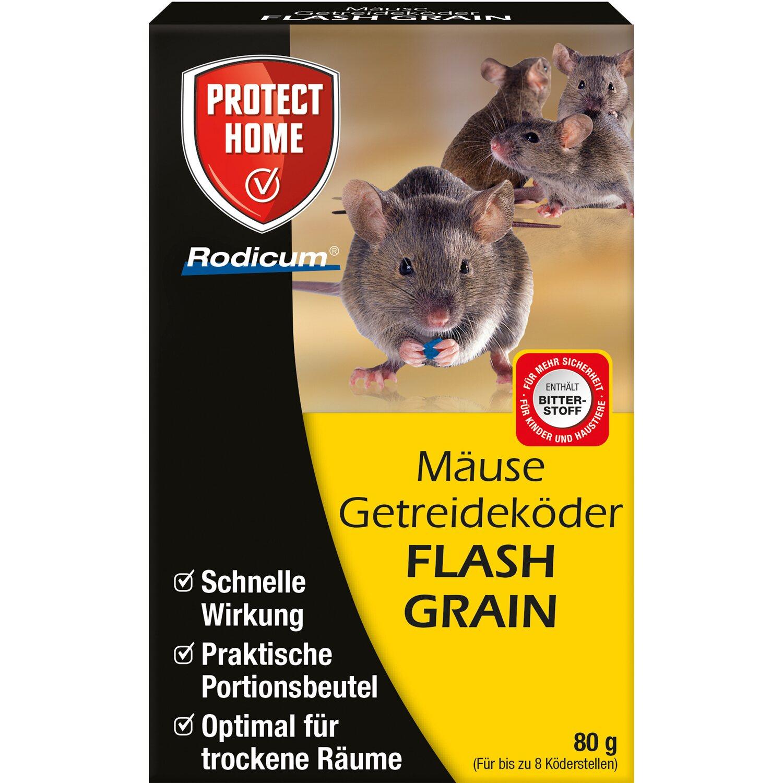 Mittel Gegen Mäuse Online Kaufen Bei Obi Obide