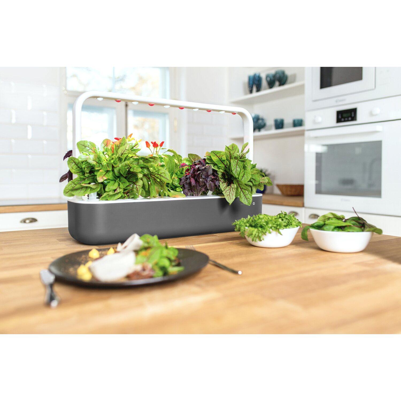 Emsa indoor garten smart garden click grow 9 grau kaufen bei obi - Indoor garten ...