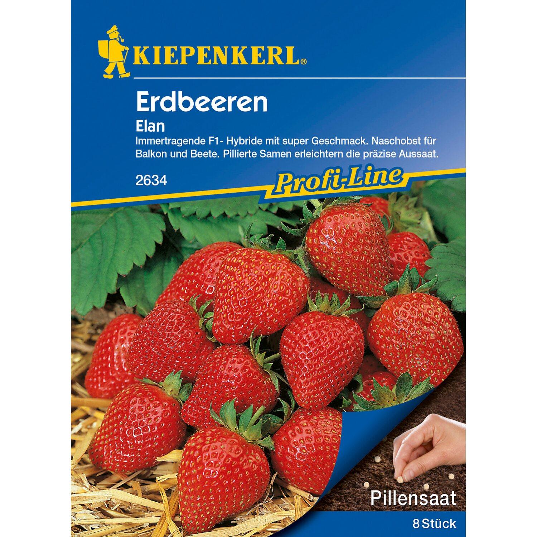 Atemberaubend Gemüsesamen online kaufen bei OBI | OBI.de &TX_72
