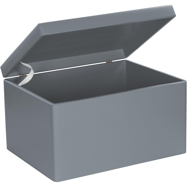 Favorit Aufbewahrungsbox online kaufen bei OBI IY38