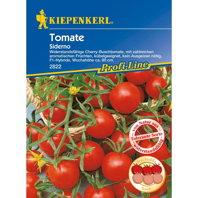 kiepenkerl profi line tomaten siderno f1 hybride kaufen bei obi. Black Bedroom Furniture Sets. Home Design Ideas
