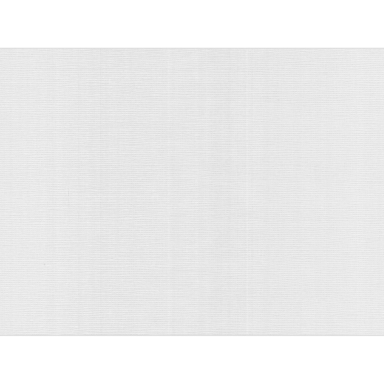 Meistervlies Protect Vliestapete Sprenkelputz | Baumarkt > Malern und Tapezieren > Tapeten | Glas