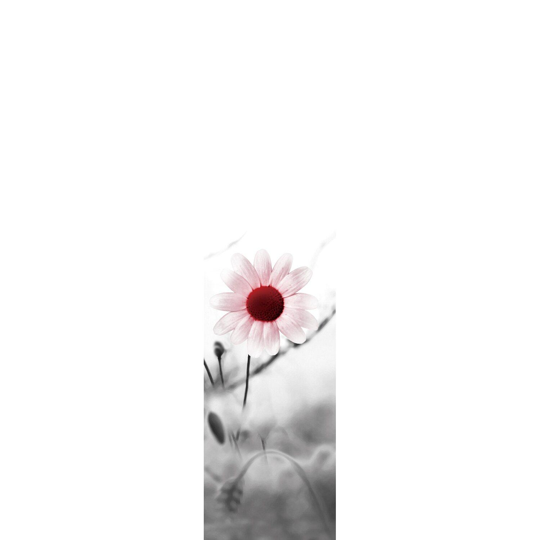 Bennetti  Schiebevorhang Voile Rosa 60 cm x 245 cm