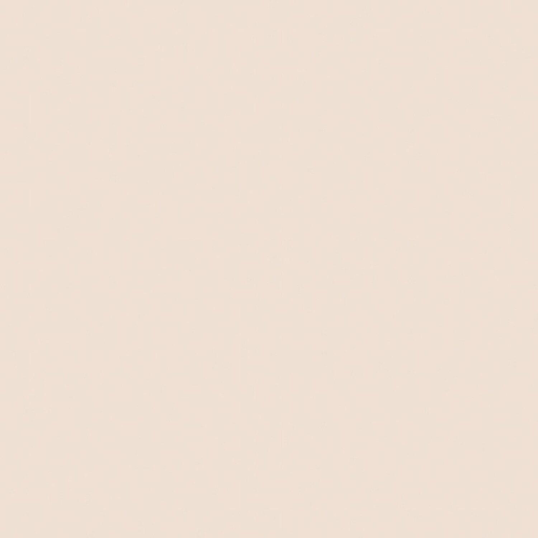 signeo bunte wandfarbe matt praline 800 ml kaufen bei obi. Black Bedroom Furniture Sets. Home Design Ideas