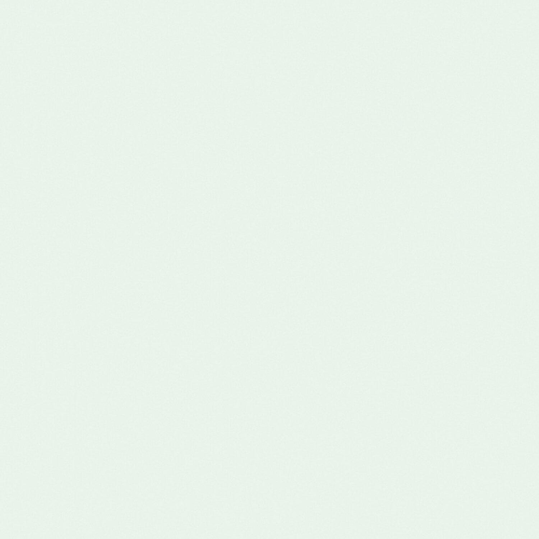 Mint Wandfarbe: Signeo Bunte Wandfarbe Matt Mint 800 Ml Kaufen Bei OBI