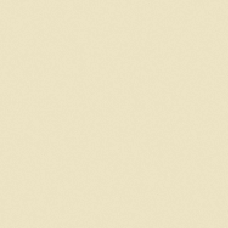 Signeo Bunte Wandfarbe Matt Light Sand 2,5 L Kaufen Bei OBI