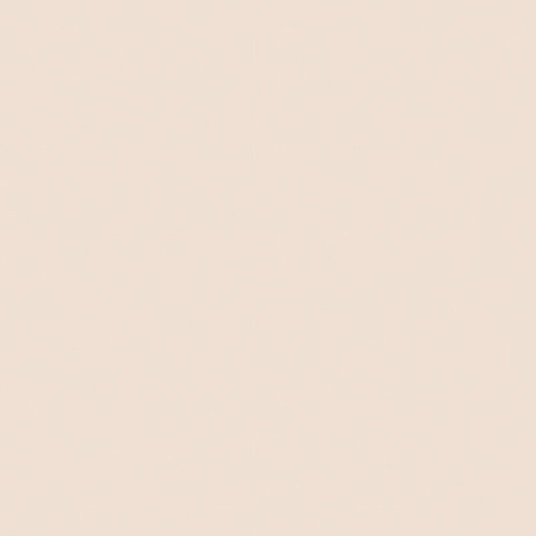 Farbpalette Wandfarben Braun Obi Gasflasche: Signeo Bunte Wandfarbe Matt Praline 2,5 L Kaufen Bei OBI