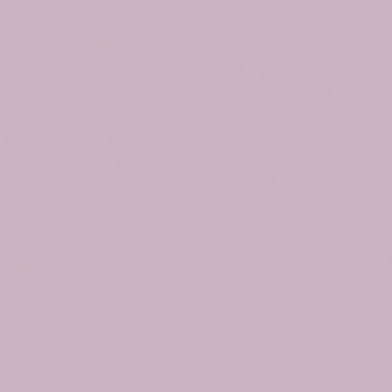 Signeo Bunte Wandfarbe Matt Shadow Grey 800 Ml Kaufen Bei OBI