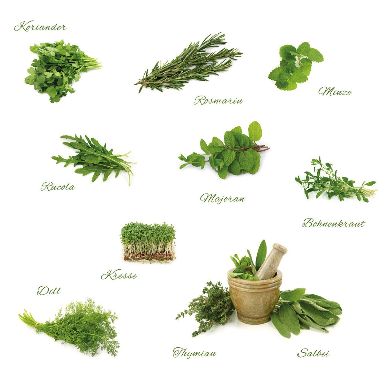 Eurographics  Deco Sticker Different Herbs
