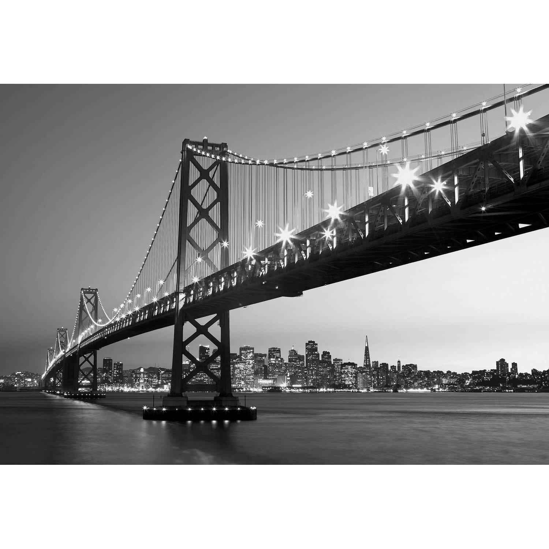 Fototapete San Fransisco Horizont 366 cm x 254 cm
