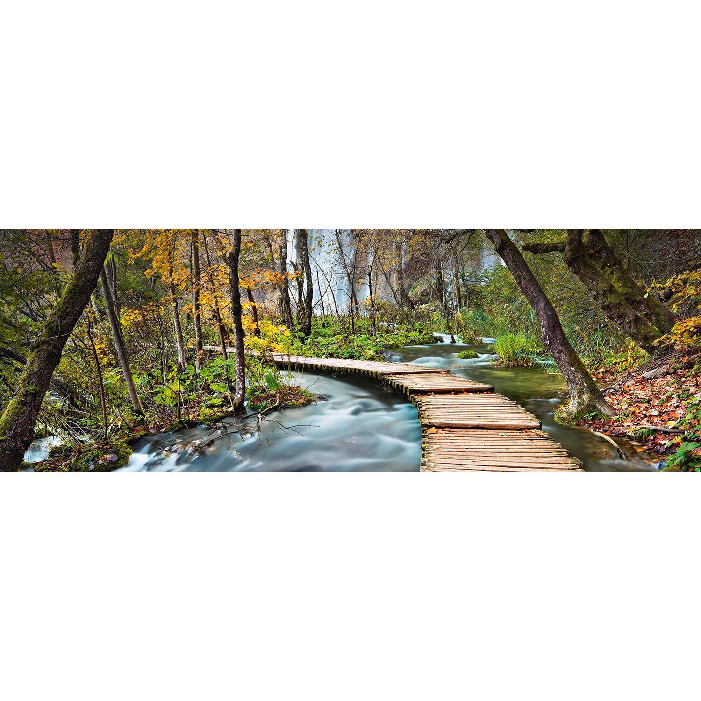 Fototapete Pfad in den Wald 366 cm x 127 cm